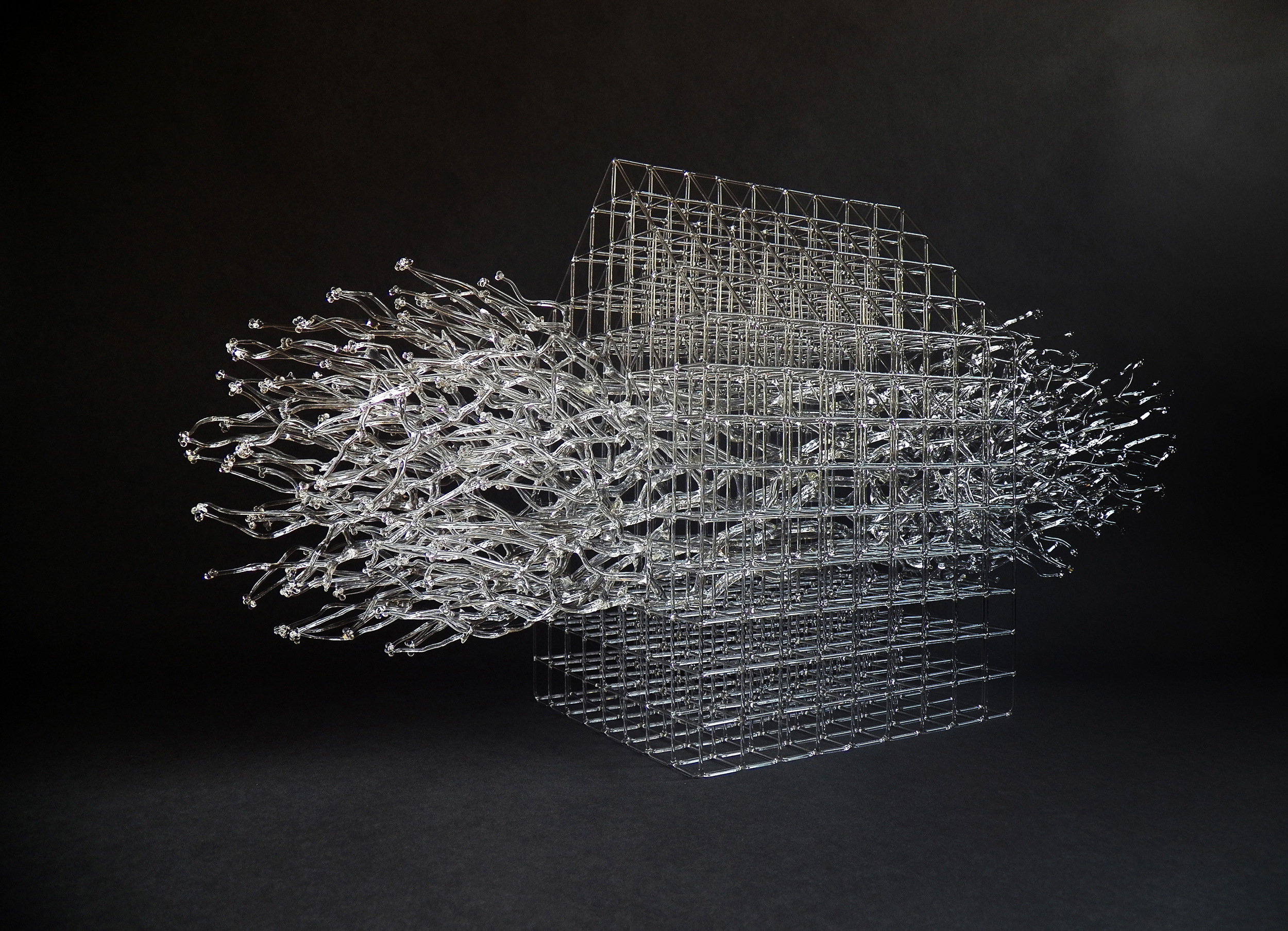 Eunsuh Choi, Housed Barrier IV. Flameworked, borosilicate glass. H 30, W 13, D 8 in. courtesy: pittsburgh glass center